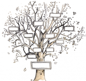 Tracing your family tree – Evening Course