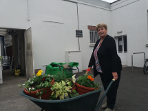 Summer Gardening 2018