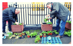 gardening-course-classes-warrenmount-community-education-centre-1
