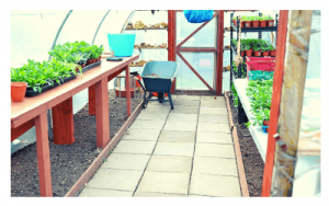 gardening-course-warrenmount-centre-3