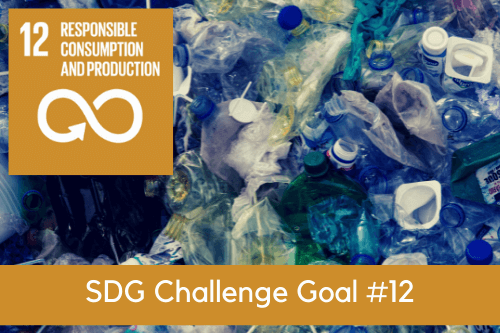 SDG12 - Responsible Consumption and Production